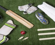 The Luxe Cricket Pitch will provide consistent bounce and great playing characteristics