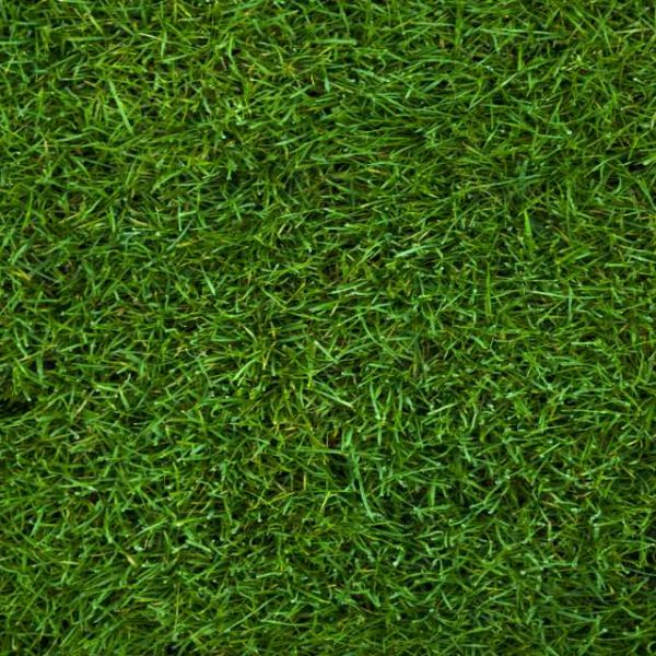 LeisureTurf 20 Will perform year after year and easy to maintain
