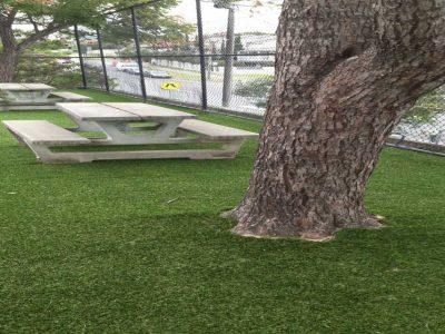 artificial lawn public area